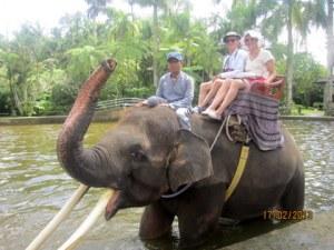 Elephant safari Park, Ubud