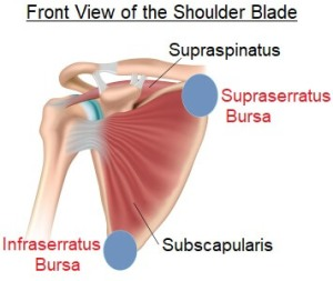 scapulothoracic-bursitis-shoulder